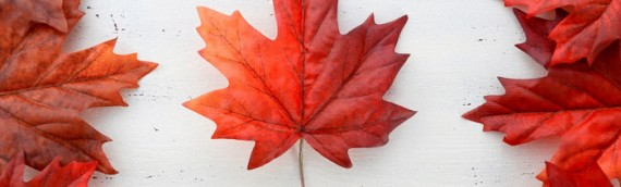Happy Canada Day! Celebrating 150 Years Strong
